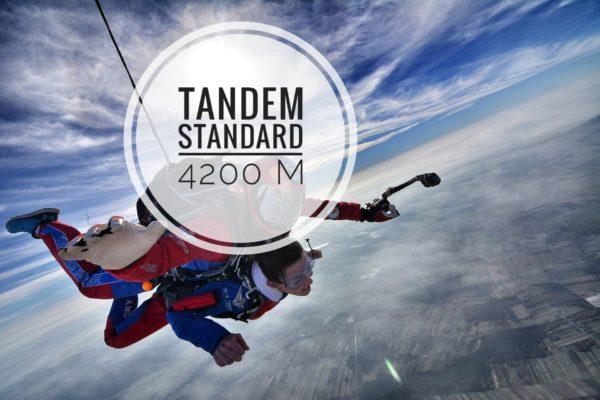 skok tandem standard 600x400 - SKOK TANDEM </br> 4200 STANDARD